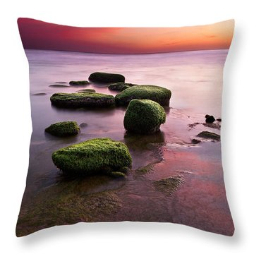 Simphony Of Color Throw Pillow by Jorge Maia