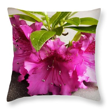 Throw Pillow featuring the photograph Simple Beauty  by Aaron Berg