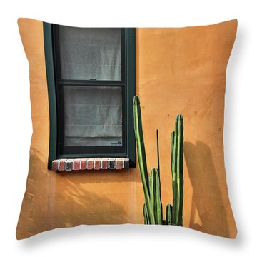 Throw Pillow featuring the photograph Simple Design by Barbara Manis