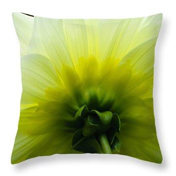 Simple Elegance Throw Pillow by Christi Kraft