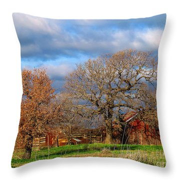 Simple Hideaway  Throw Pillow