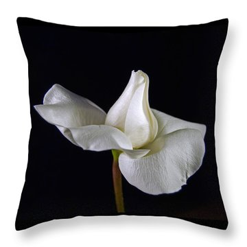 Simple In White Throw Pillow