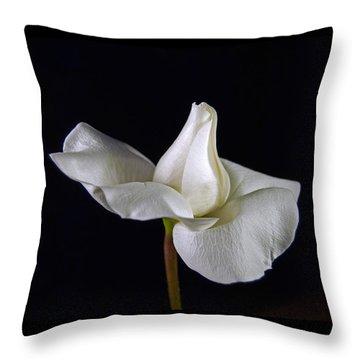 Simple In White Throw Pillow by Elsa Marie Santoro