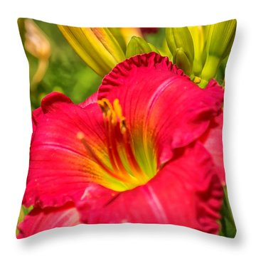 Simple Lily Throw Pillow by James  Meyer