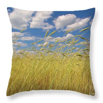 Simple Moments On The Farm Throw Pillow