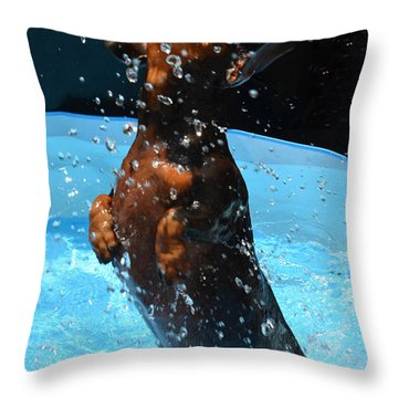 Simple Pleasures Of Romeo The Water Dog Throw Pillow