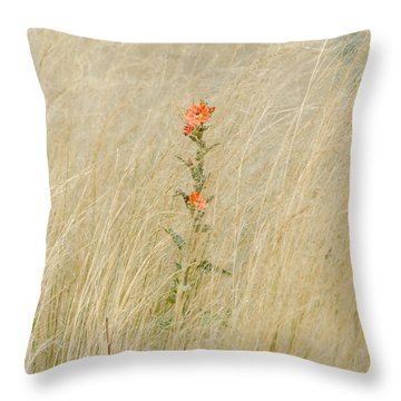 Simple Splash Of Color Throw Pillow