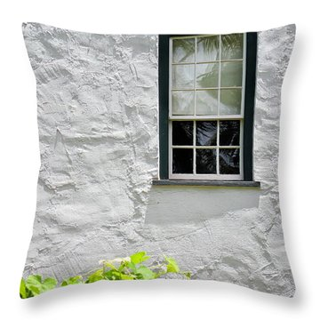 Simple Window Throw Pillow