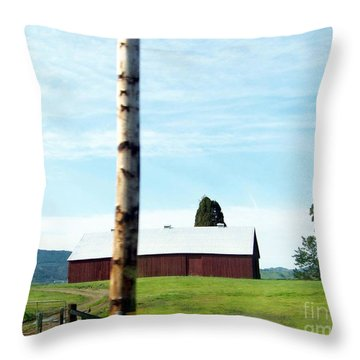 Throw Pillow featuring the photograph Simplicity by Bobbee Rickard