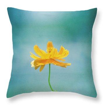Simplicity Throw Pillow by Kim Hojnacki