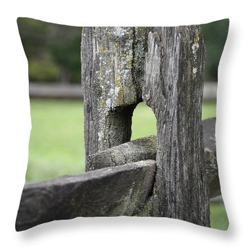 Simplicity Throw Pillow by Lisa Phillips