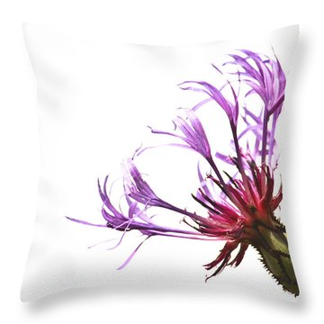 Simplicity Throw Pillow by Tammy Schneider