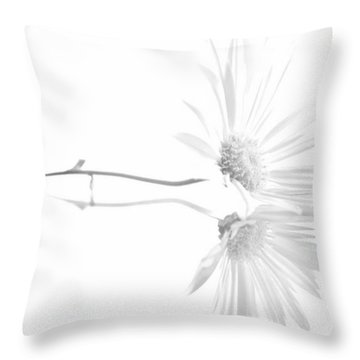 Simplistic Reflection... Throw Pillow by Tammy Schneider