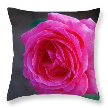 Simply A Rose Throw Pillow by Angela J Wright