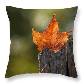 Simply Autumn Throw Pillow