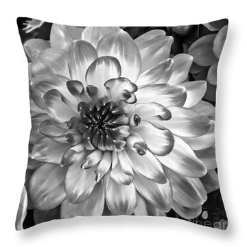 Simply Beautiful Throw Pillow by Arlene Carmel