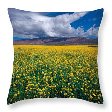Throw Pillow featuring the photograph Simply Beautiful by Yue Wang