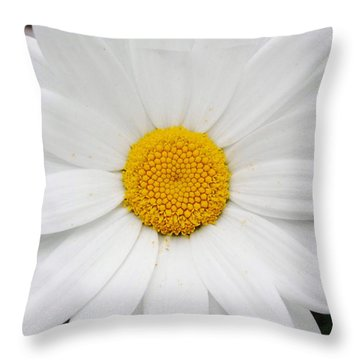 Throw Pillow featuring the photograph Simply by Natalie Ortiz