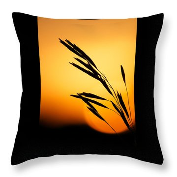 Simply Natural Throw Pillow