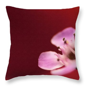 Simply Pretty Throw Pillow