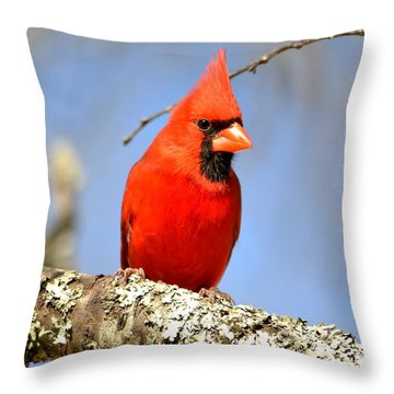 Simply Red Throw Pillow by Deena Stoddard