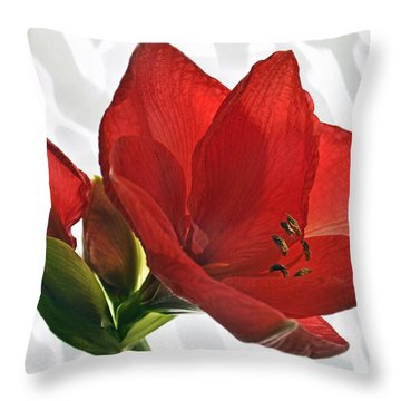 Simply Red. Throw Pillow