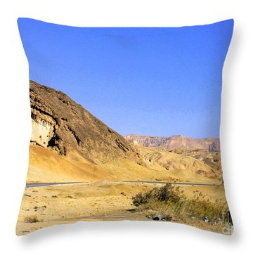Sinai Desert  Throw Pillow
