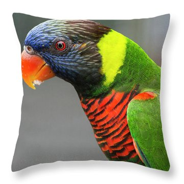 Cindy Throw Pillows