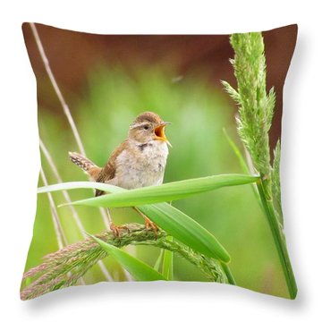 Singing For A Companion Throw Pillow