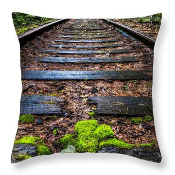 Singing In The Rain Throw Pillow by Debra and Dave Vanderlaan