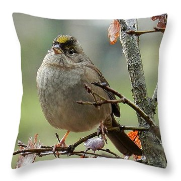 Singing In The Rain Throw Pillow