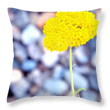 Single 16139 Throw Pillow