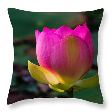 Single Blossum Throw Pillow