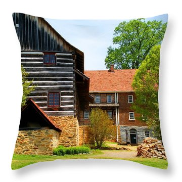 Single Brothers House Throw Pillow by Kathryn Meyer