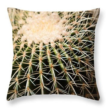 Single Cactus Ball Throw Pillow
