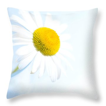 Single Daisy Flower In Vase Throw Pillow by Sabine Jacobs
