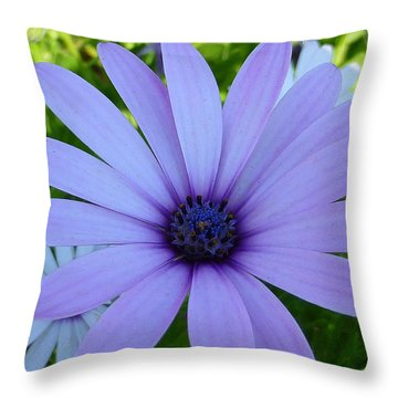 Single Throw Pillow by Gandz Photography