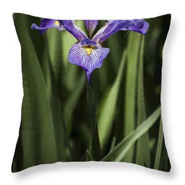 Throw Pillow featuring the photograph Single Iris by Penny Lisowski