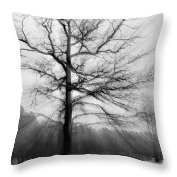 Single Leafless Tree In Winter Forest Throw Pillow