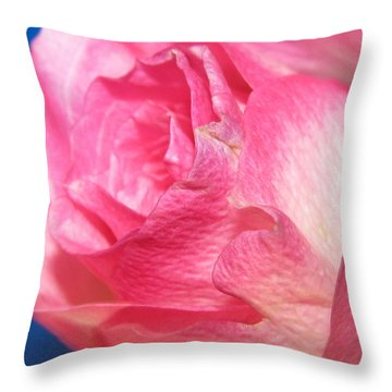 Throw Pillow featuring the photograph Single Pink Rose 3 by Margaret Newcomb
