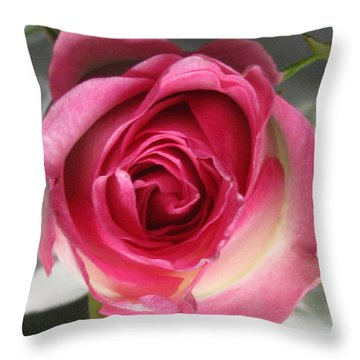 Throw Pillow featuring the photograph Single Pink Rose by Margaret Newcomb