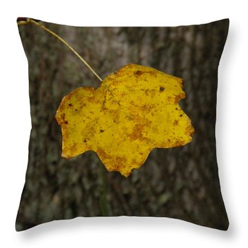 Throw Pillow featuring the photograph Single Poplar Leaf by Nick Kirby