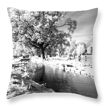 Single Tree Aginst The Sun Throw Pillow by Maj Seda