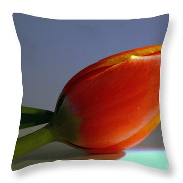 Throw Pillow featuring the photograph Singular Beauty by Irma BACKELANT GALLERIES