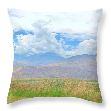 Throw Pillow featuring the photograph Singular In The Summer by Marilyn Diaz