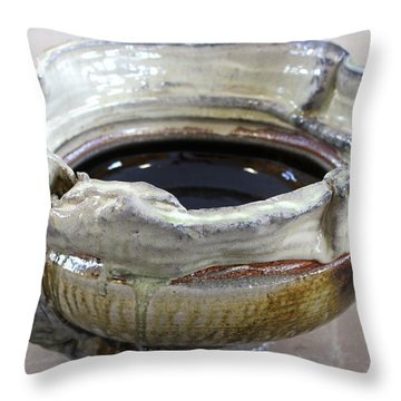 Sink Series 0030 Throw Pillow by Richard Sean Manning