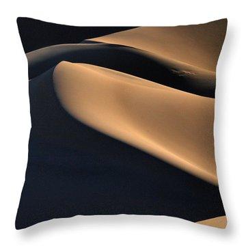 Sinuous Dunes  Throw Pillow
