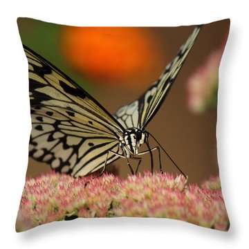 Sip Of The Nectar Throw Pillow by Randy Hall