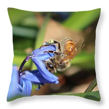 Sipping Upside-down Throw Pillow by Lucinda VanVleck