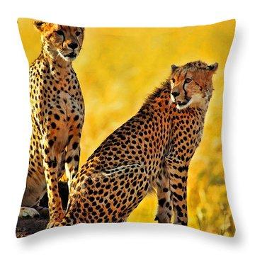 Sister Cheetahs Throw Pillow